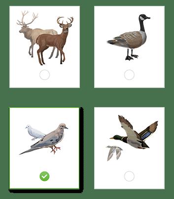 HUNTINGsmart! Practice Quiz options